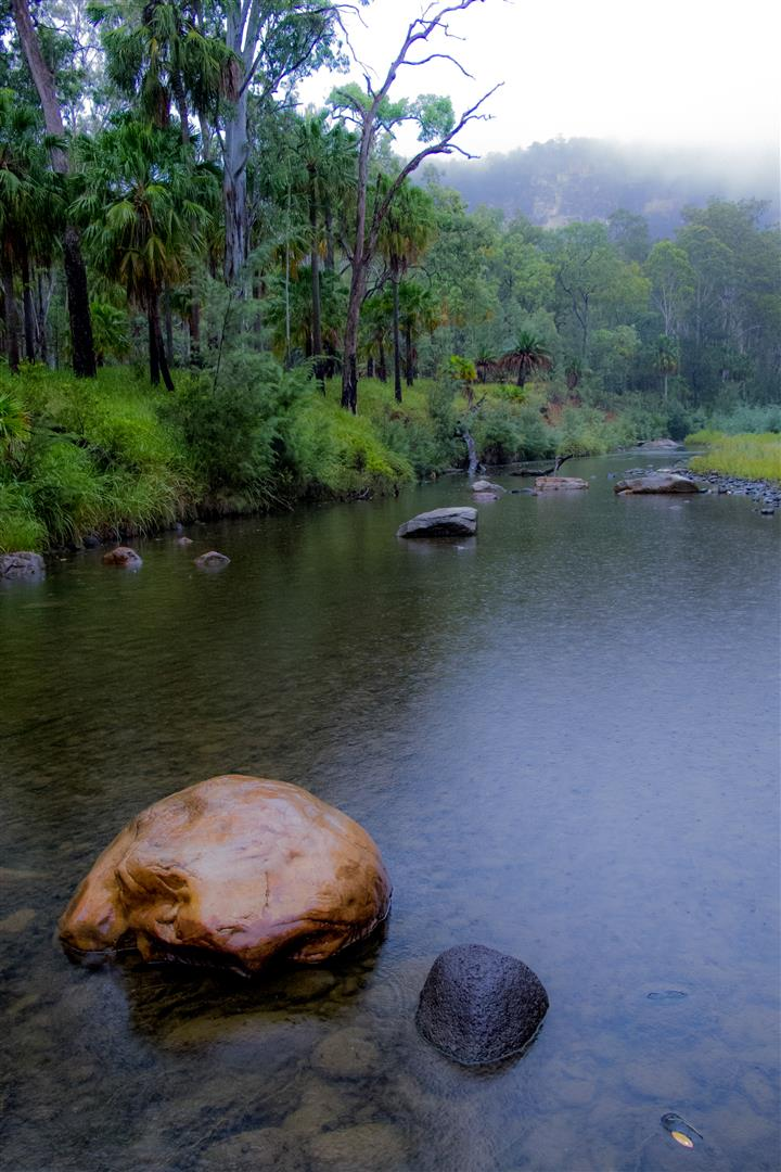 A rainy morning on Carnarvon Creek