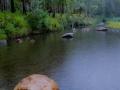 A rainy morning on Carnarvon Creek