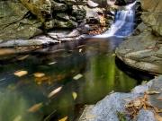 Dalrymple Creek.