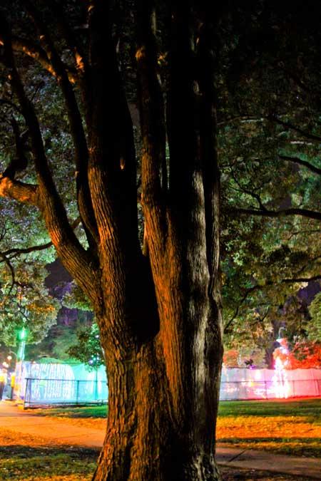 Christmas lights spectacular, Toowoomba