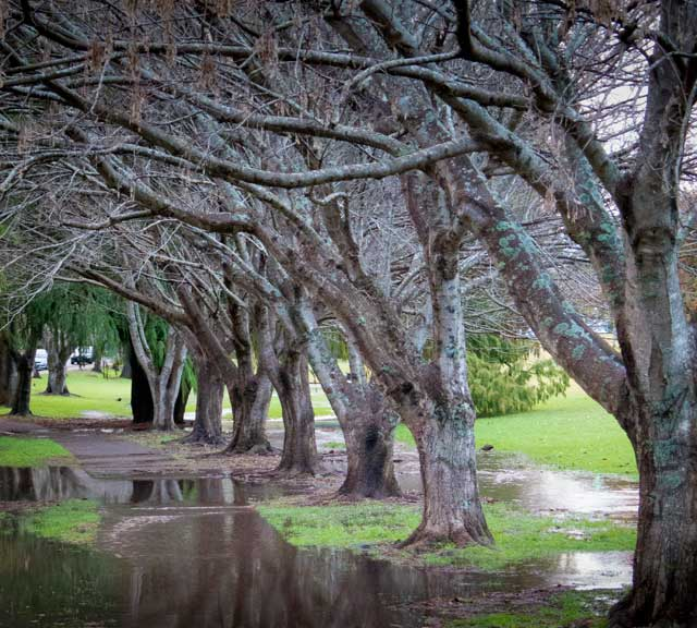 Rainy Toowoomba footpath