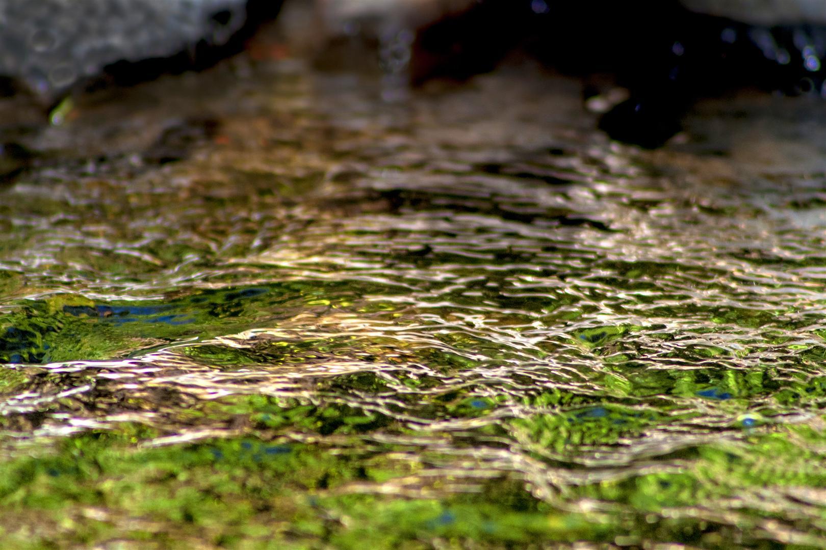 Redwood Creek, Toowoomba