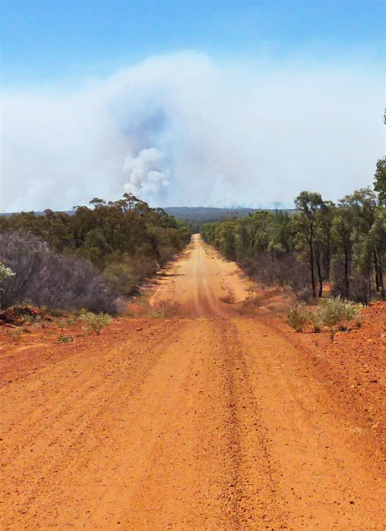 Driving to fire at Orkadilla State Forest. Photo by Teresa Brecknell.
