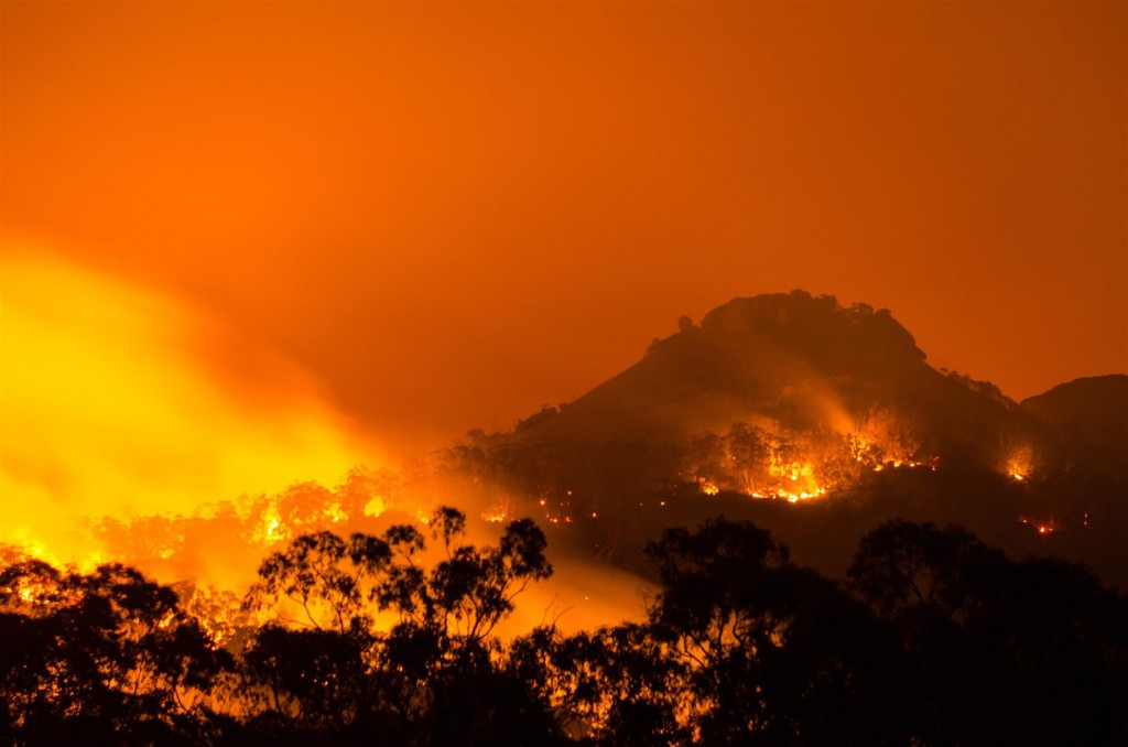 Fire, Girraween National Park. Photo by Brett Roberts.
