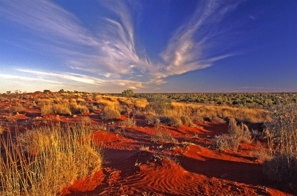 Simpson Desert, western Queensland.